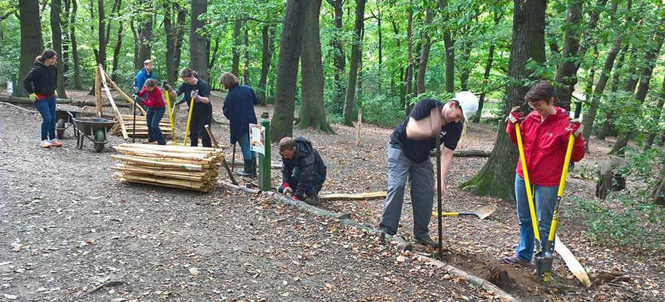 Volunteers working in the Great North wood